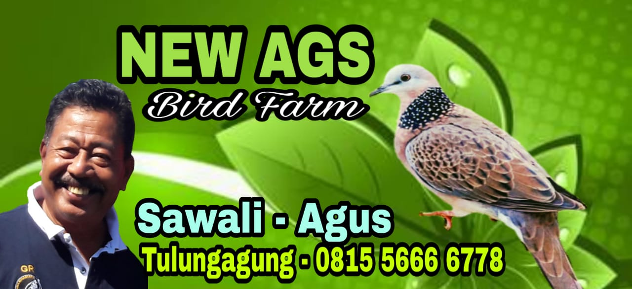 New AGS Bird Farm